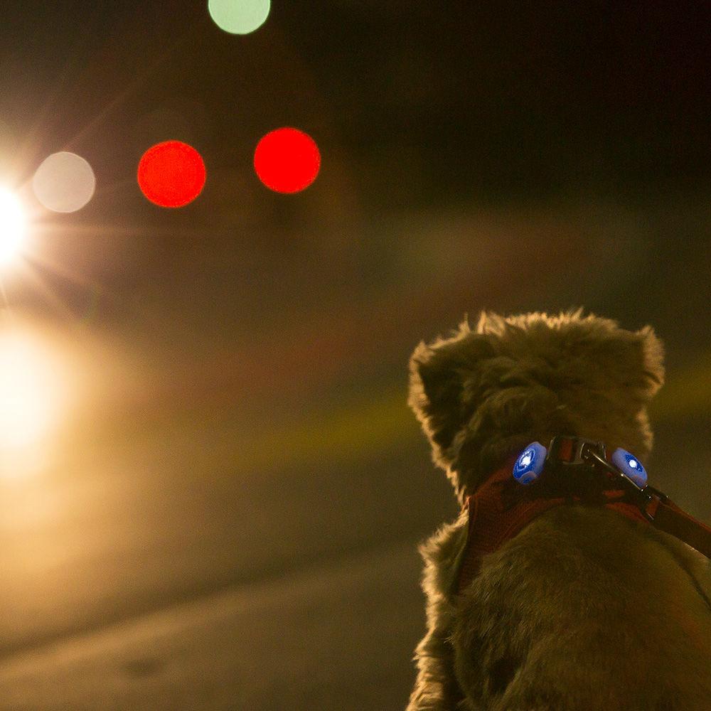 Curli luumi LED Sicherheitslicht, Bild 7