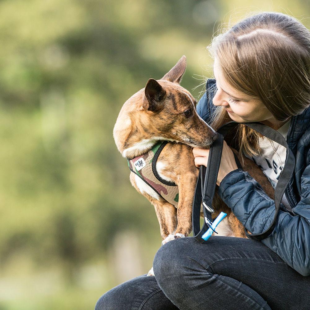Curli Vest Hunde Geschirr Air-Mesh, Bild 15