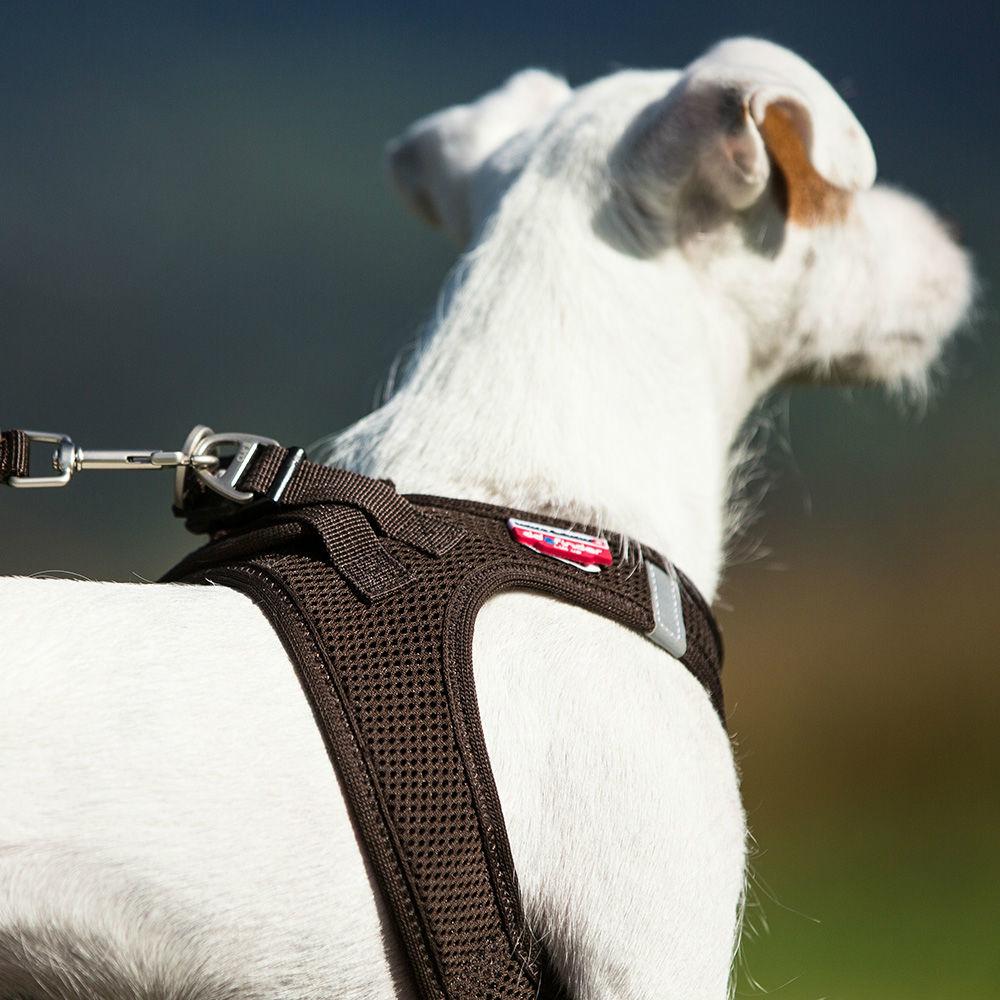 Curli Vest Hunde Geschirr Air-Mesh, Bild 16