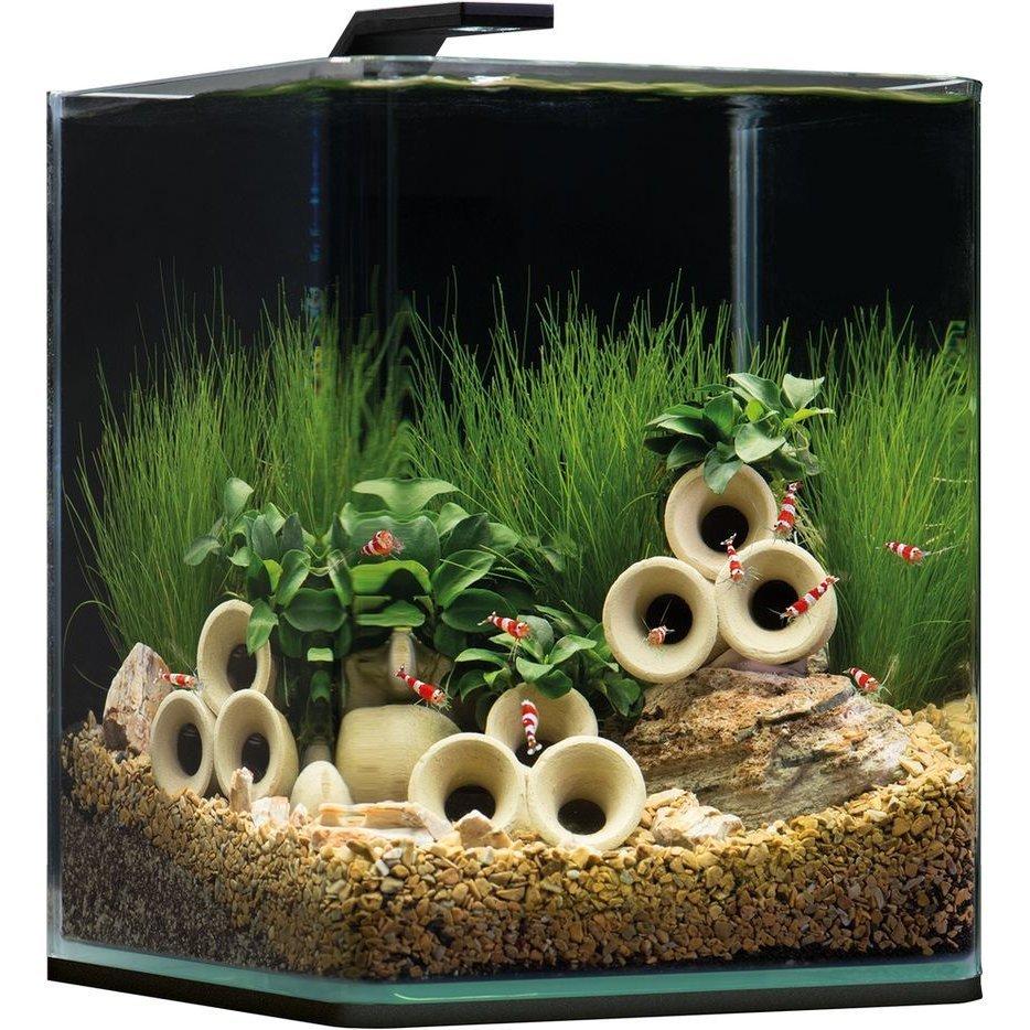 Dennerle NanoCube Aquarium