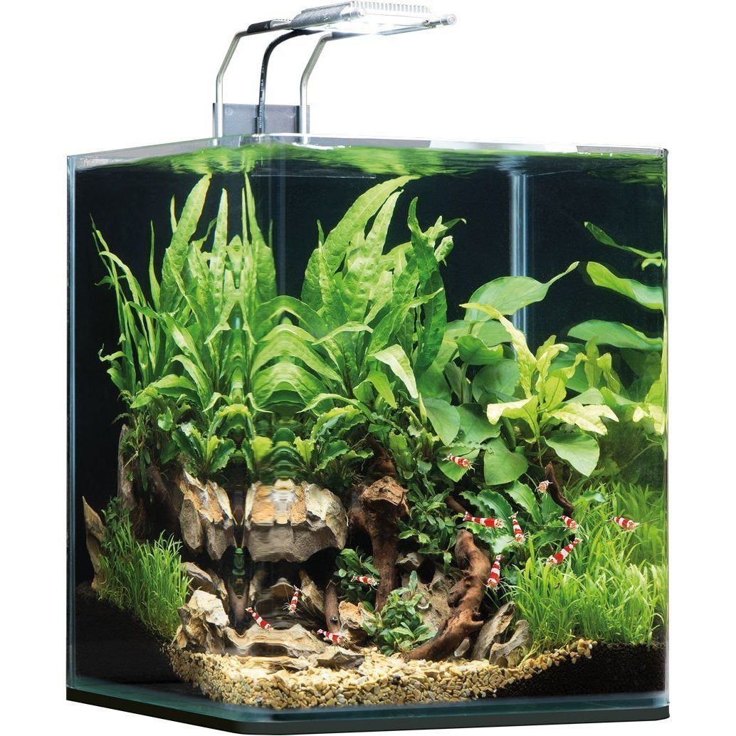 Dennerle NanoCube Aquarium, 20 Liter