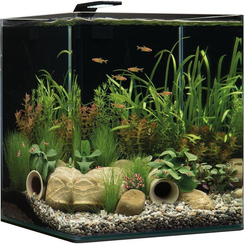 Dennerle NanoCube Aquarium, Bild 7