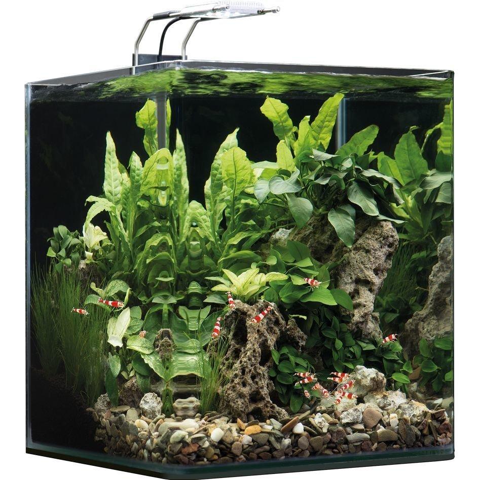 Dennerle NanoCube Aquarium, 30 Liter