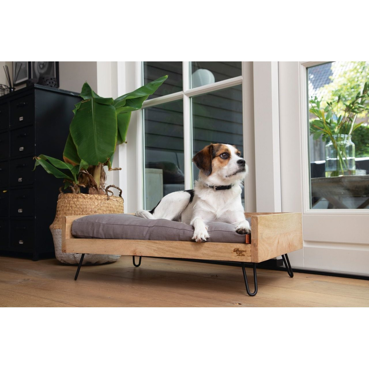 Designed By Lotte Holzbett für Hunde Turana, Bild 5