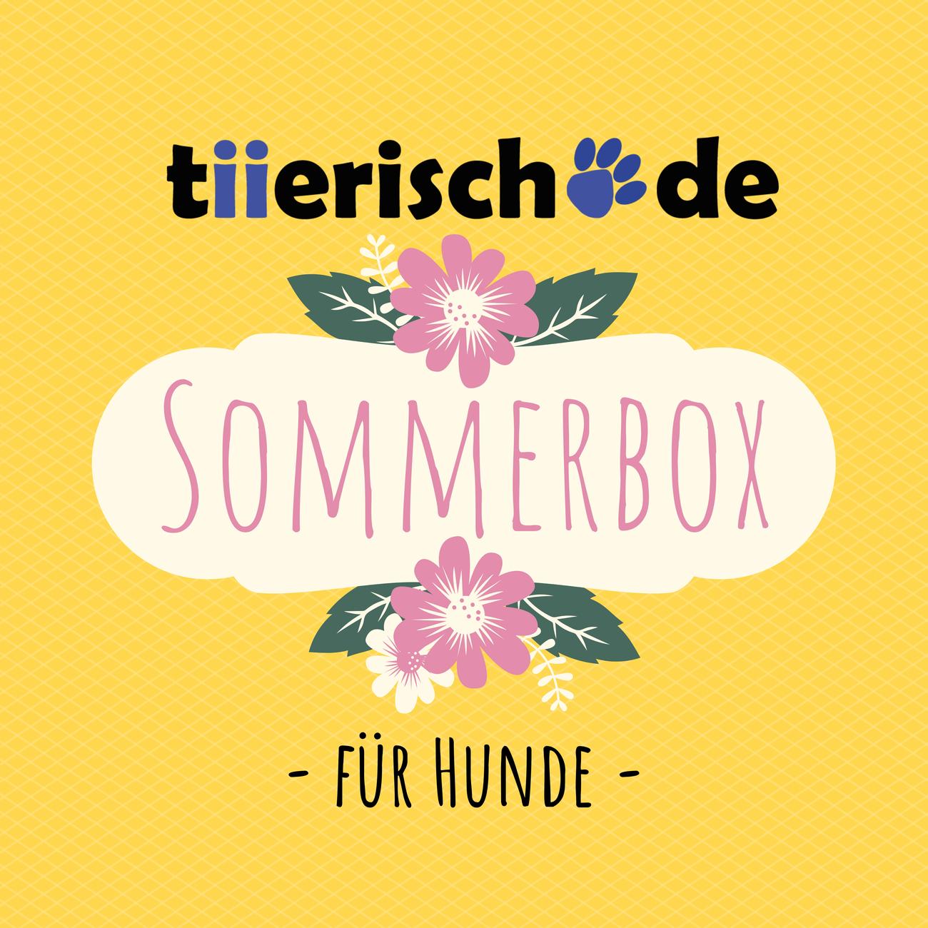tiierisch.de Die Sommerbox für Hunde