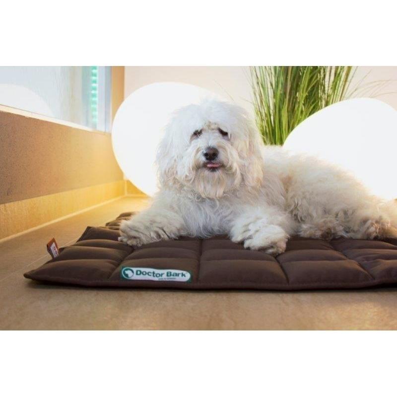 Doctor Bark Hundedecke, Bild 2