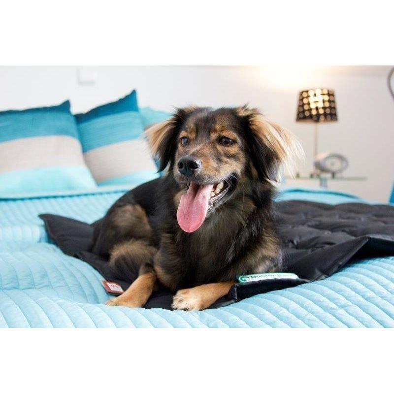 Doctor Bark Hundedecke, Bild 20