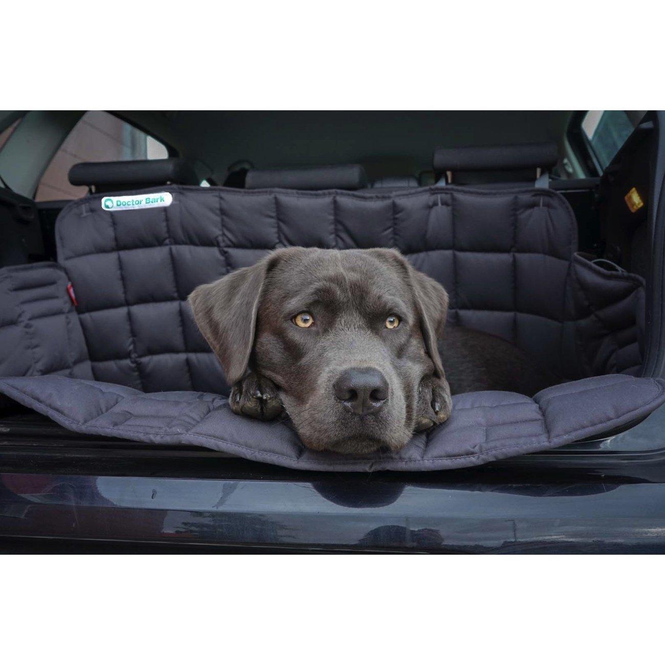 Doctor Bark Kofferraumdecke für Hunde, Bild 3