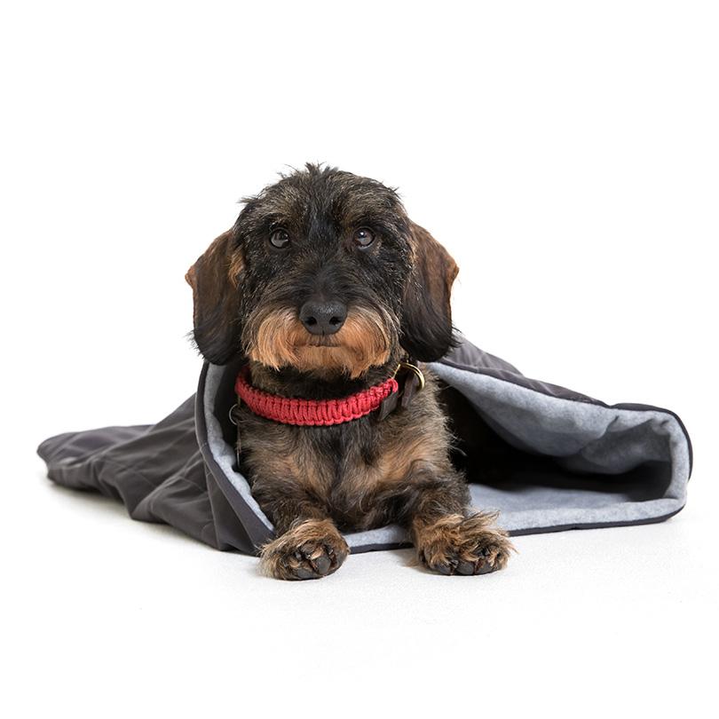Doctor Bark Schlafsack für Hunde, Bild 8