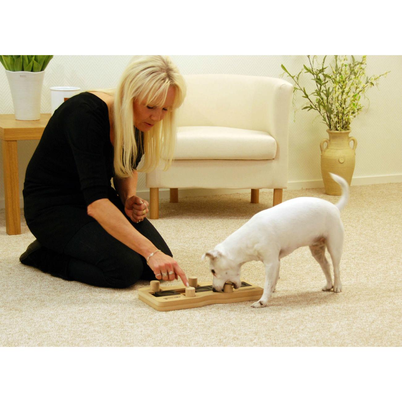 Nina Ottosson Dog Domino Intelligenzspielzeug von Nina Ottosson, Bild 2