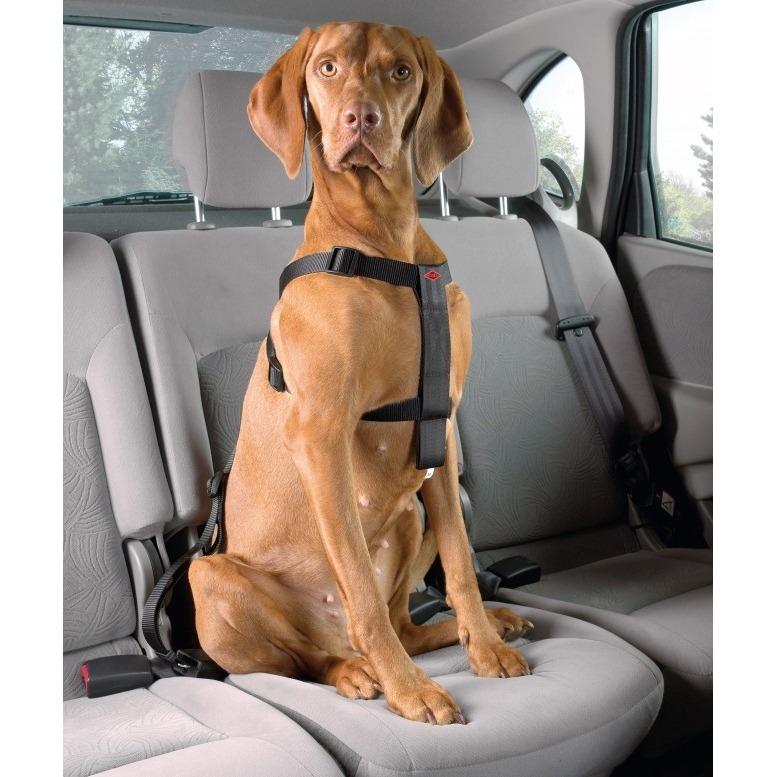 DREAM and DARE Dog Secure Auto Sicherheitsgeschirr für Hunde, Bild 2