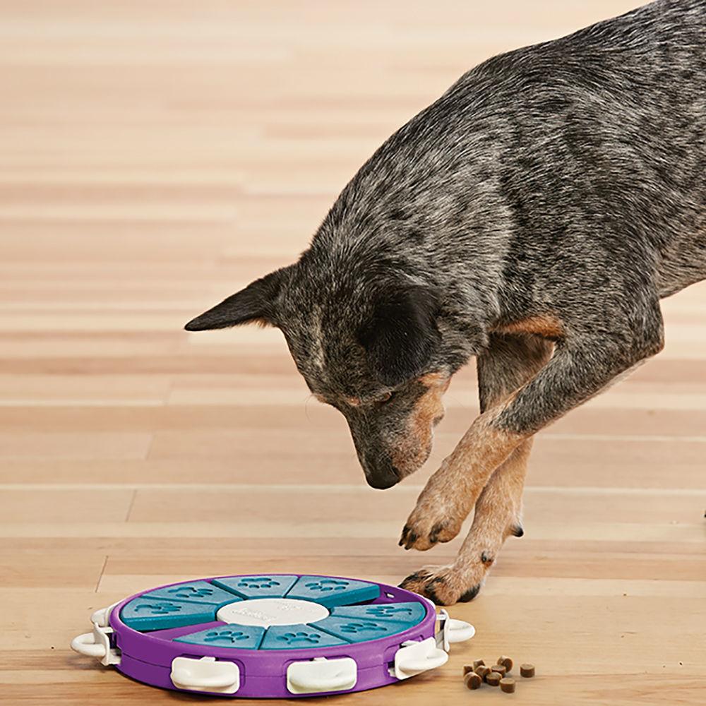 Nina Ottosson Dog Twister Plastik, Bild 2