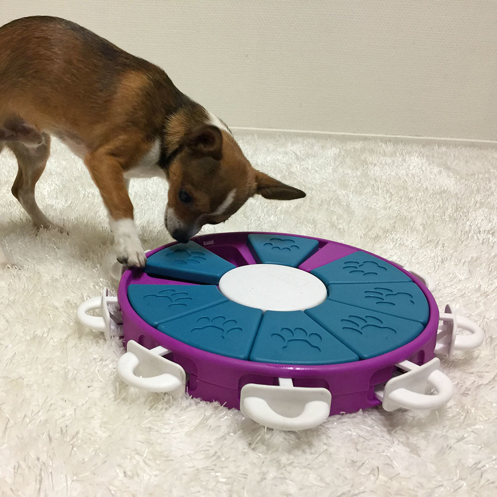 Nina Ottosson Dog Twister Plastik, Bild 3