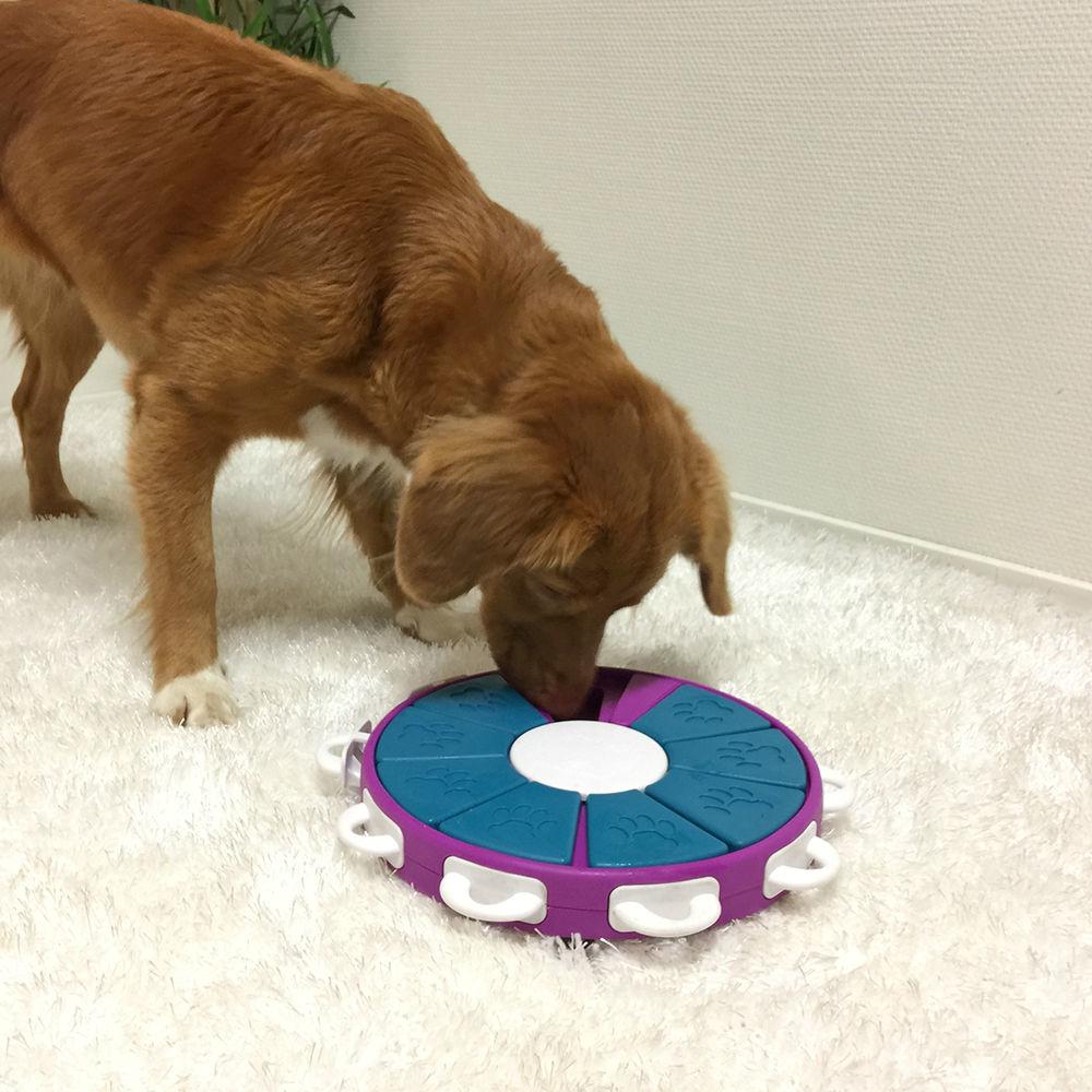 Nina Ottosson Dog Twister Plastik, Bild 5