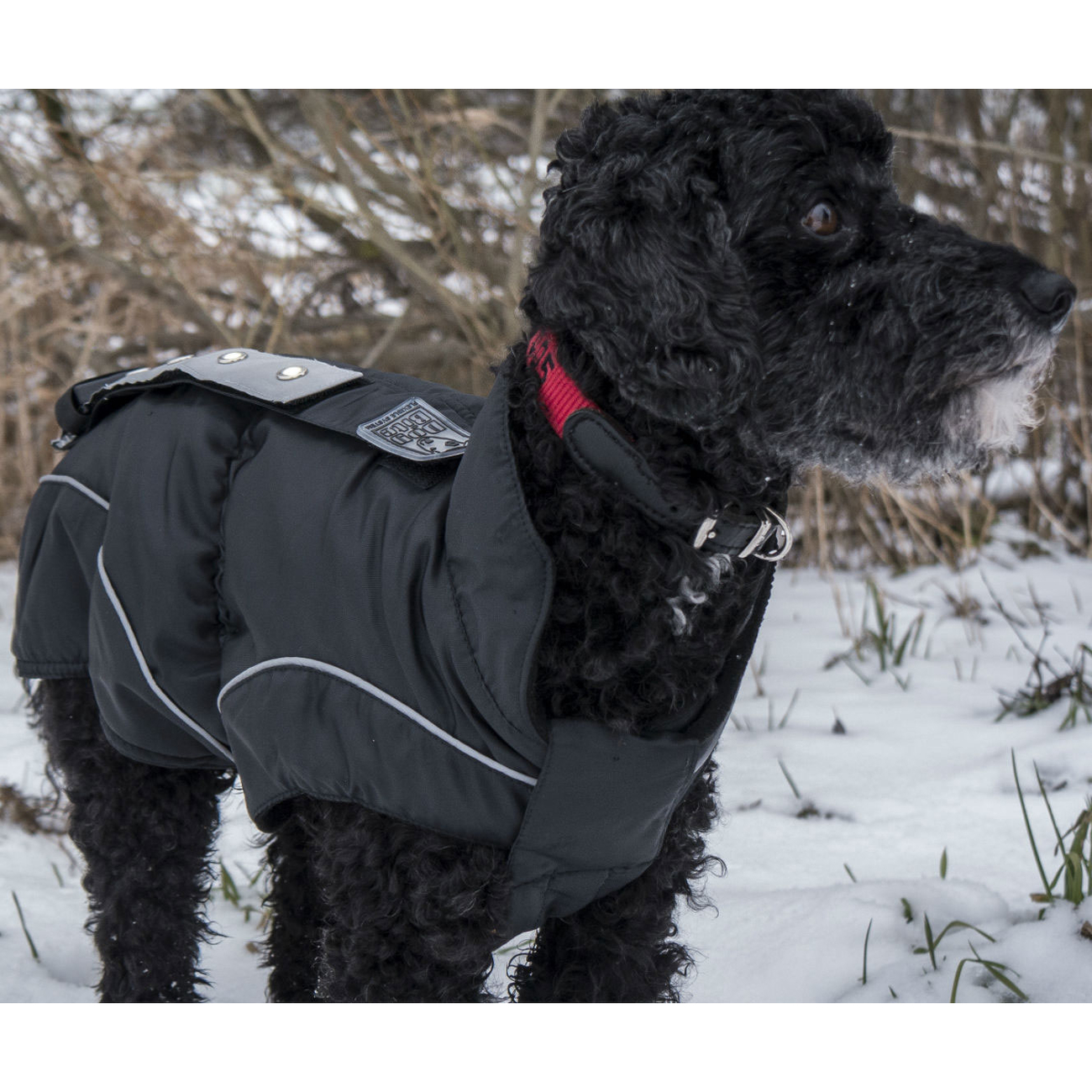 DogBite Hunde Leucht-Winterjacke mit LED
