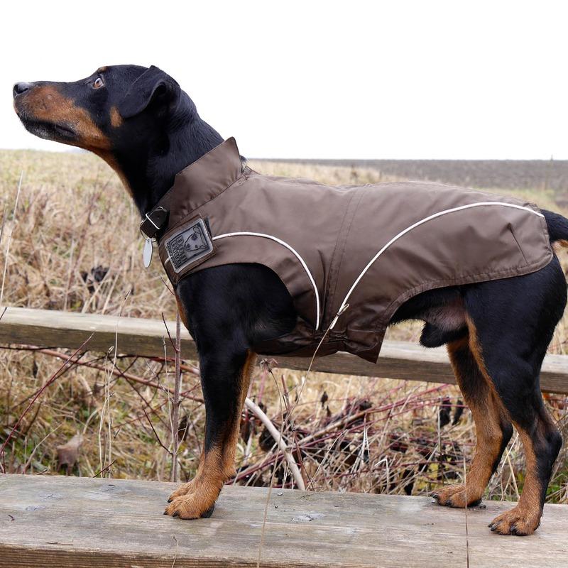 DogBite Hunde Regenjacke, Bild 10