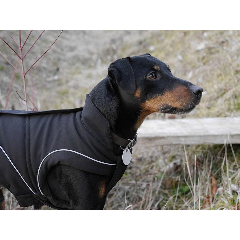 DogBite Hunde Softshell Jacke, Bild 4