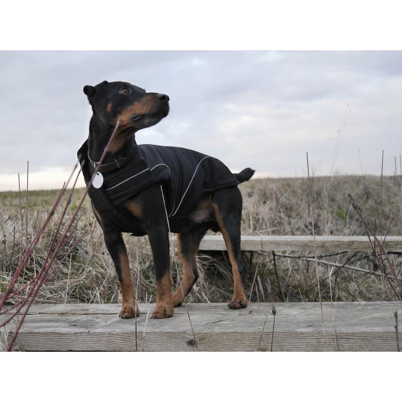 DogBite Hunde Softshell Jacke, Bild 12