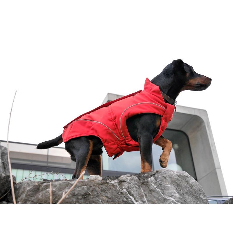 DogBite Hunde Softshell Jacke, Bild 13