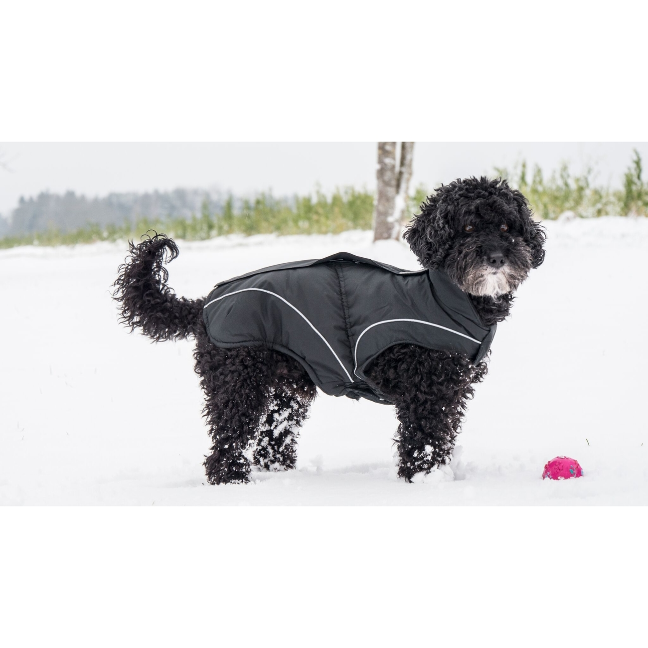 DogBite Hunde Winterjacke Matt, Bild 9