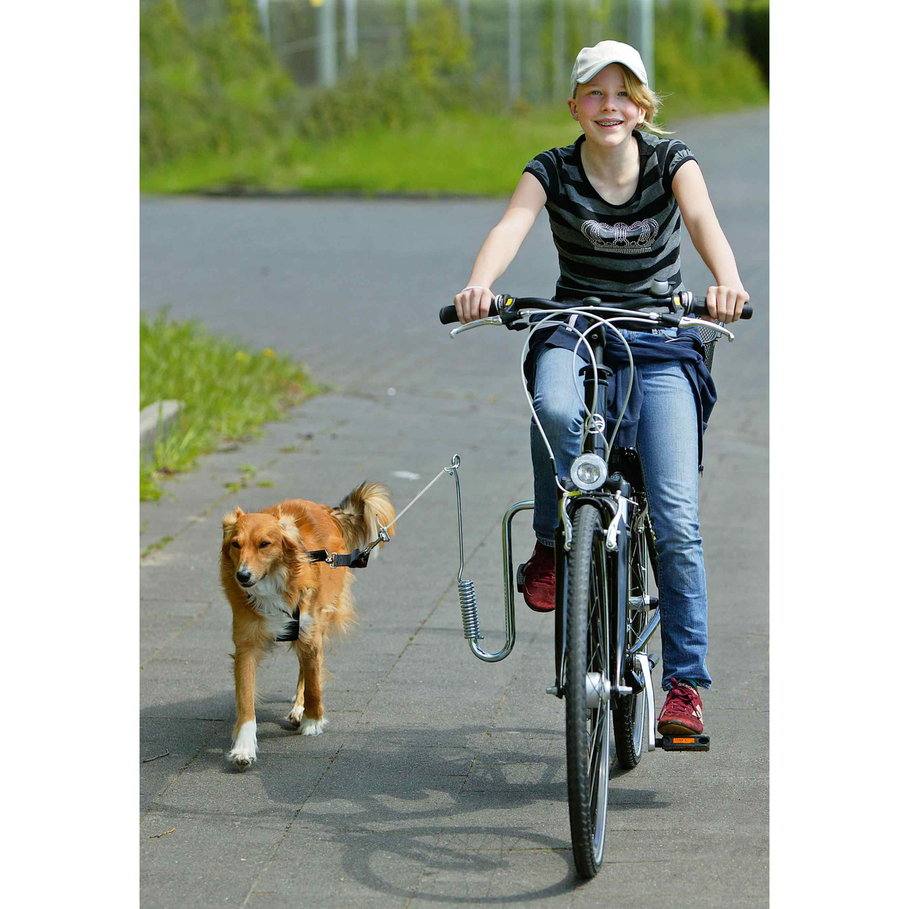 Karlie Flamingo Doggy Guide Fahrradhalter Hund