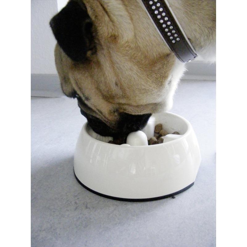 Dogit Go Slow Hunde Antischling Napf, Bild 5