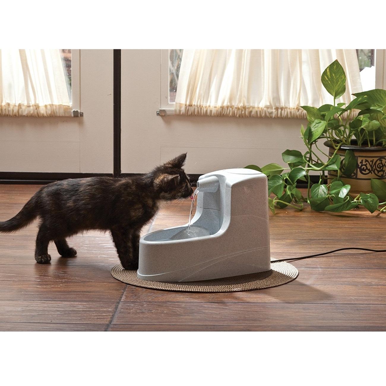 PetSafe Drinkwell Mini Trinkbrunnen für Hunde und Katzen, Bild 2