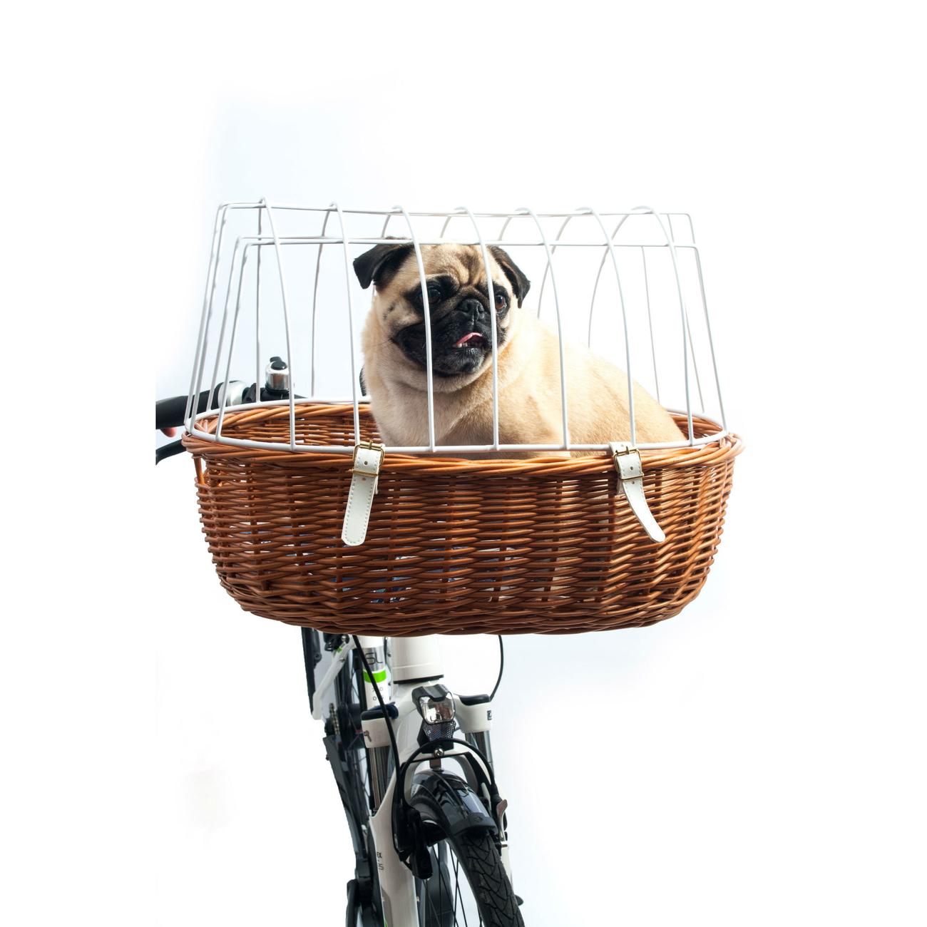 Aumüller E-Bike Hunde Fahrradkorb Standard vorne, Bild 11