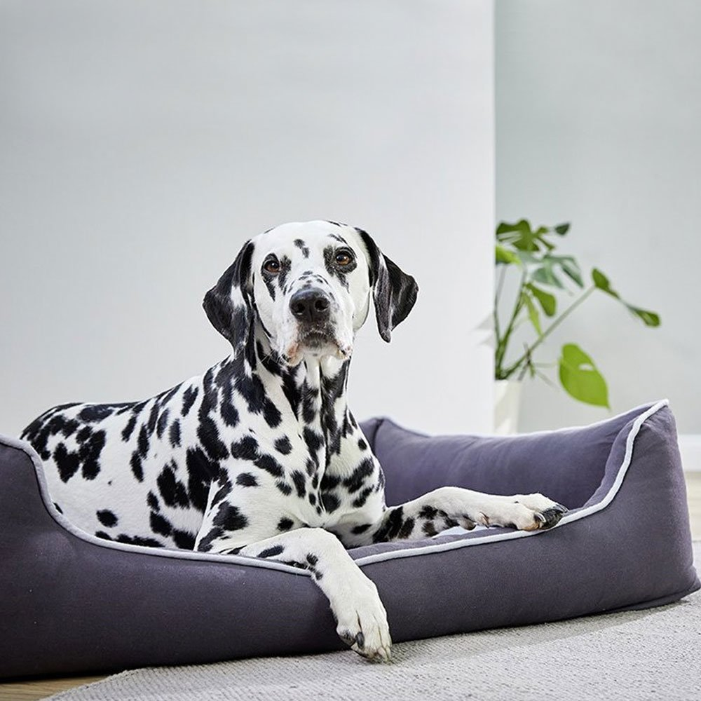 Wolters Eco Well Hunde Lounge, Bild 2