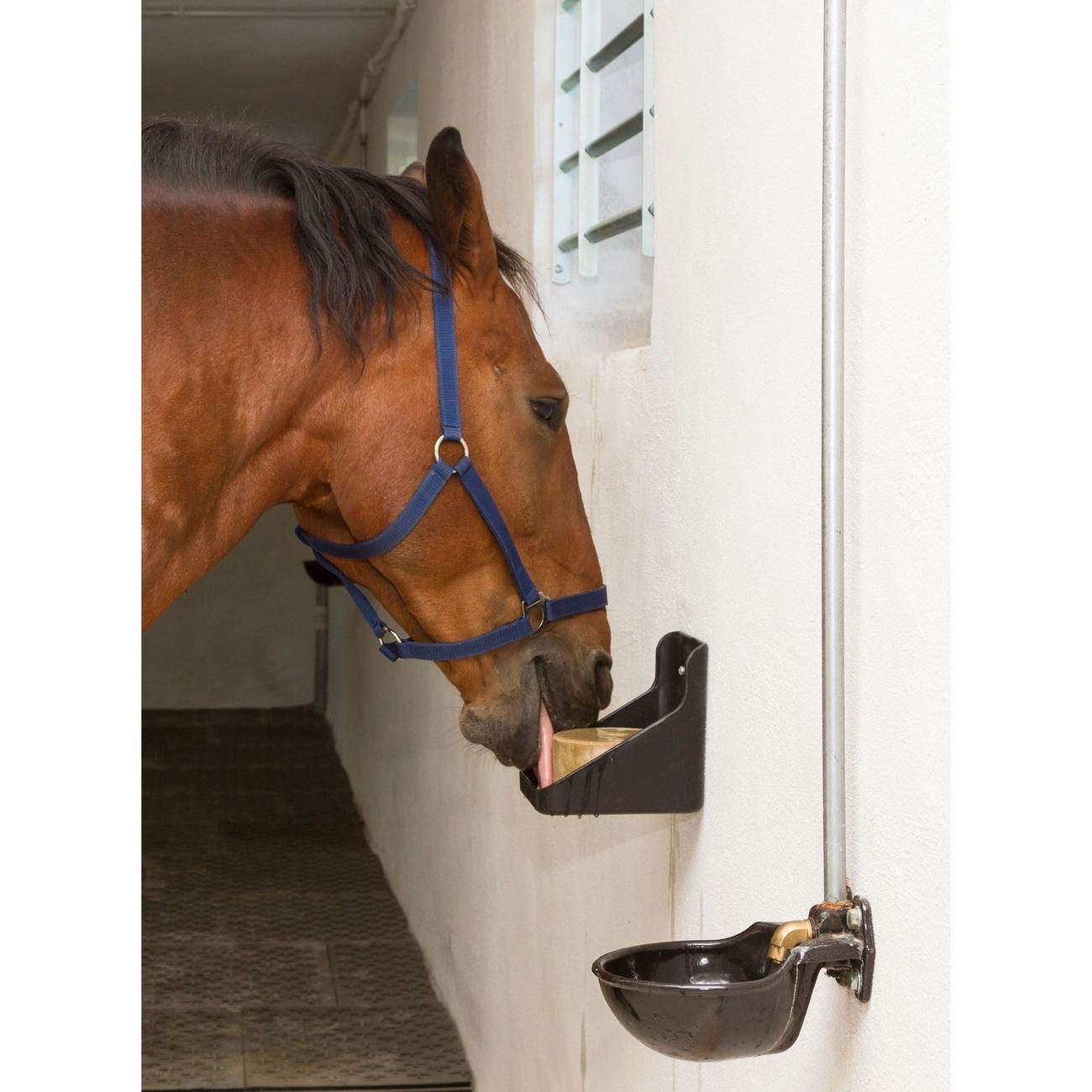 Kerbl Equisal-Leckstein für Pferde, Bild 2