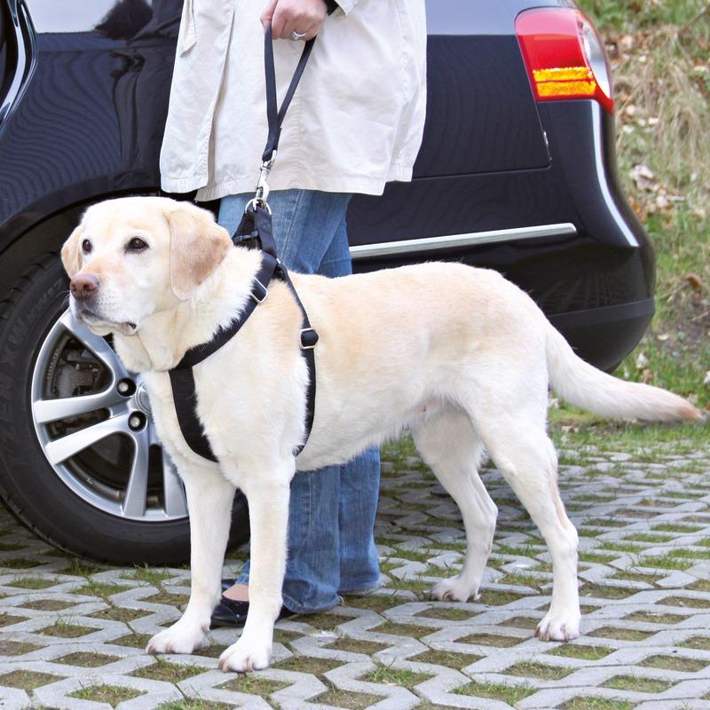Trixie Ersatz-Kurzführer für Auto Hundgeschirr 12773