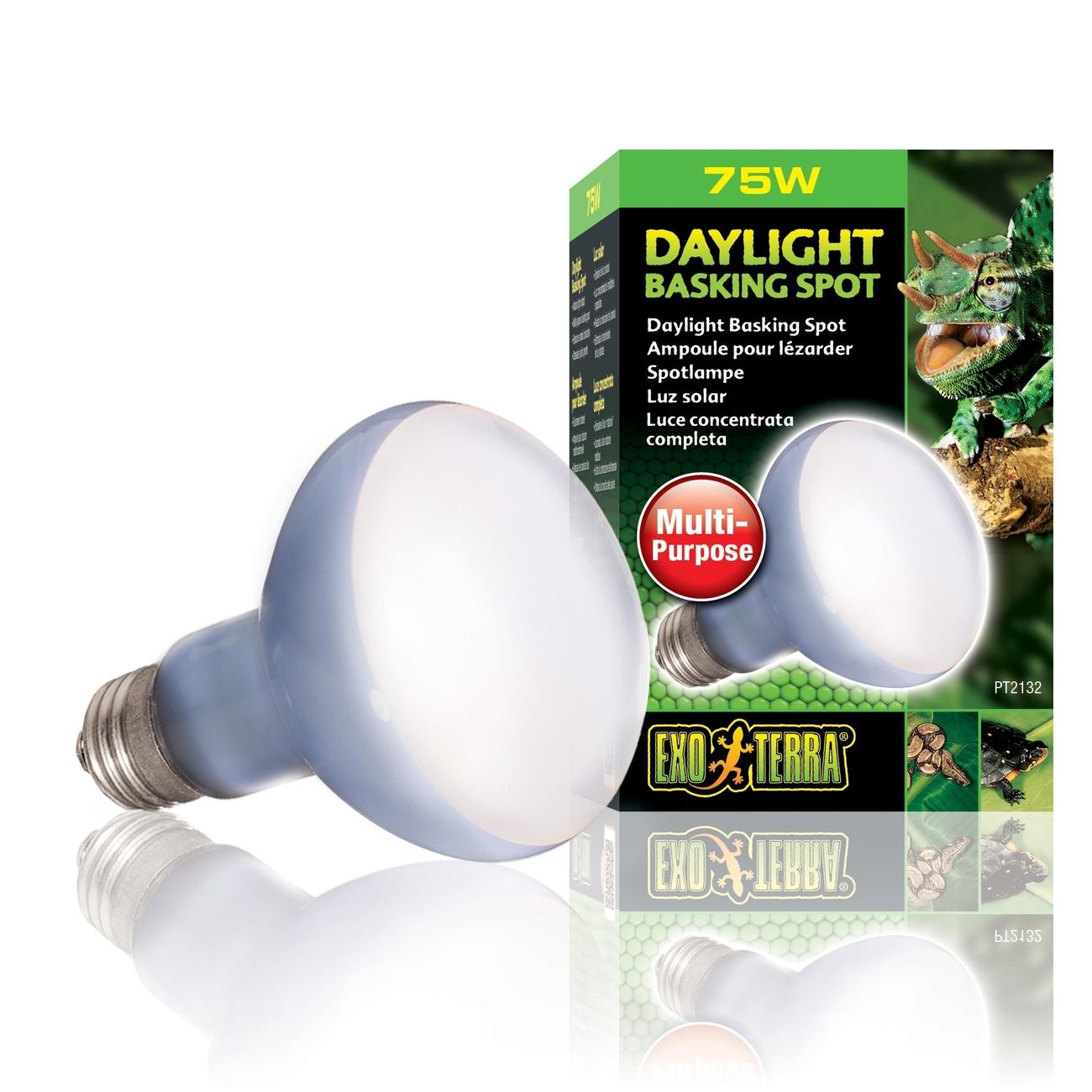 Hagen Exo Terra - Breitspektrum-Tageslichtlampe, R20/75 W