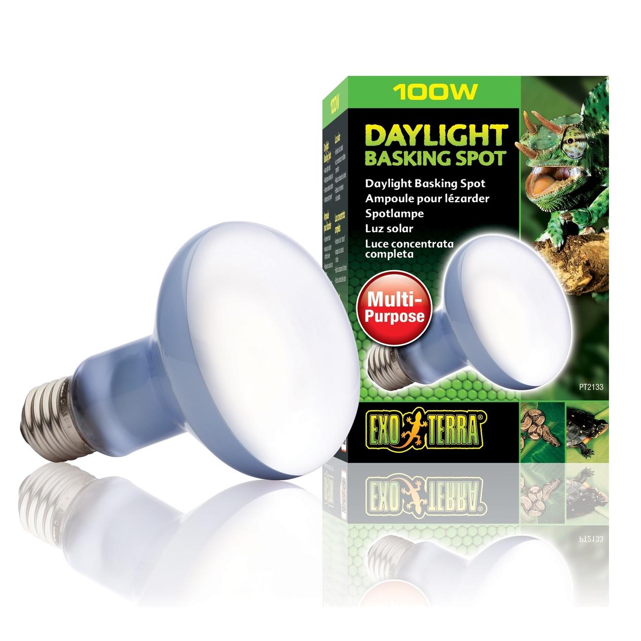Hagen Exo Terra - Breitspektrum-Tageslichtlampe, R25/100 W