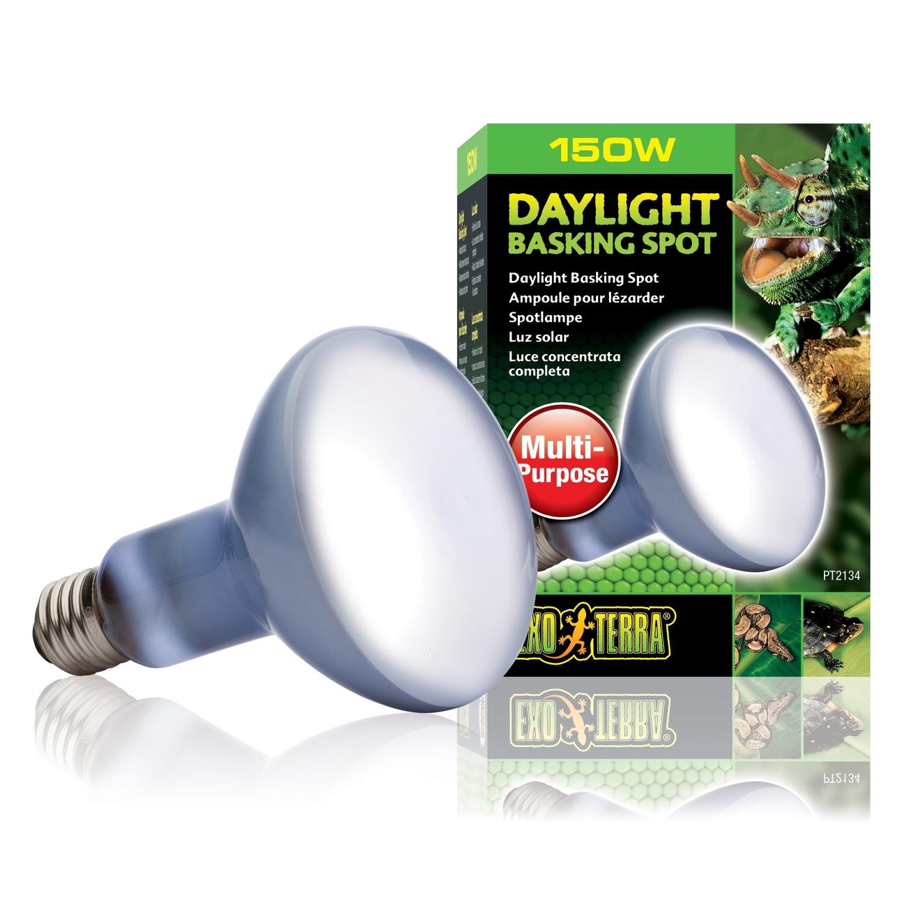 Hagen Exo Terra - Breitspektrum-Tageslichtlampe, R30/150 W