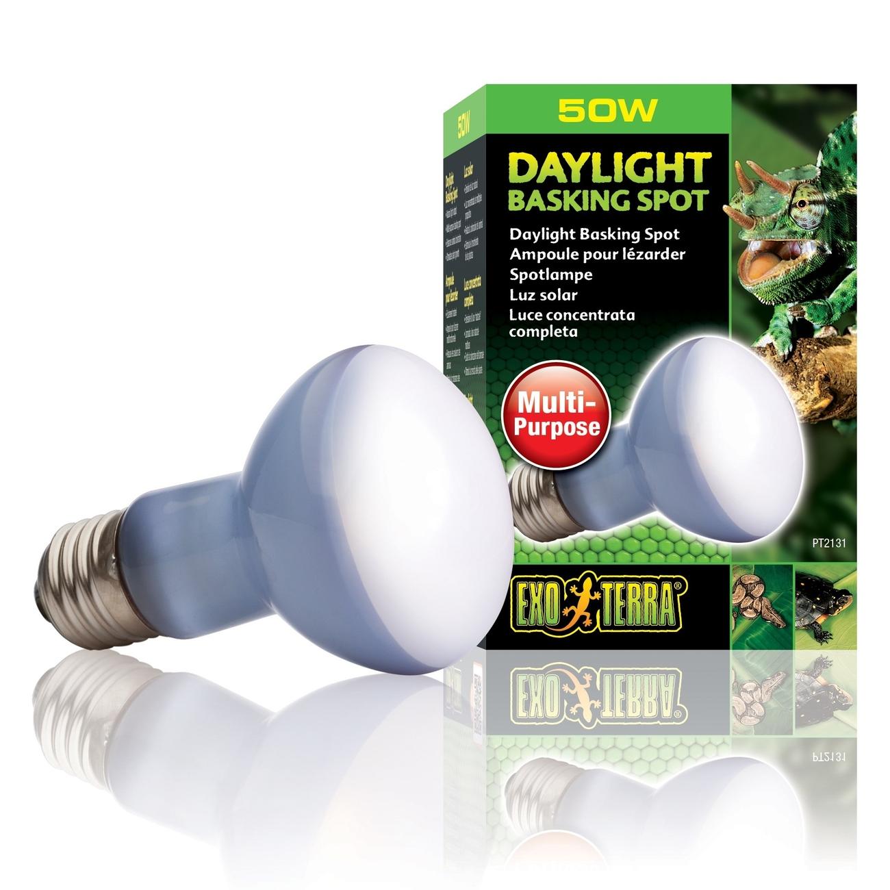 Hagen Exo Terra - Breitspektrum-Tageslichtlampe, R20/50 W