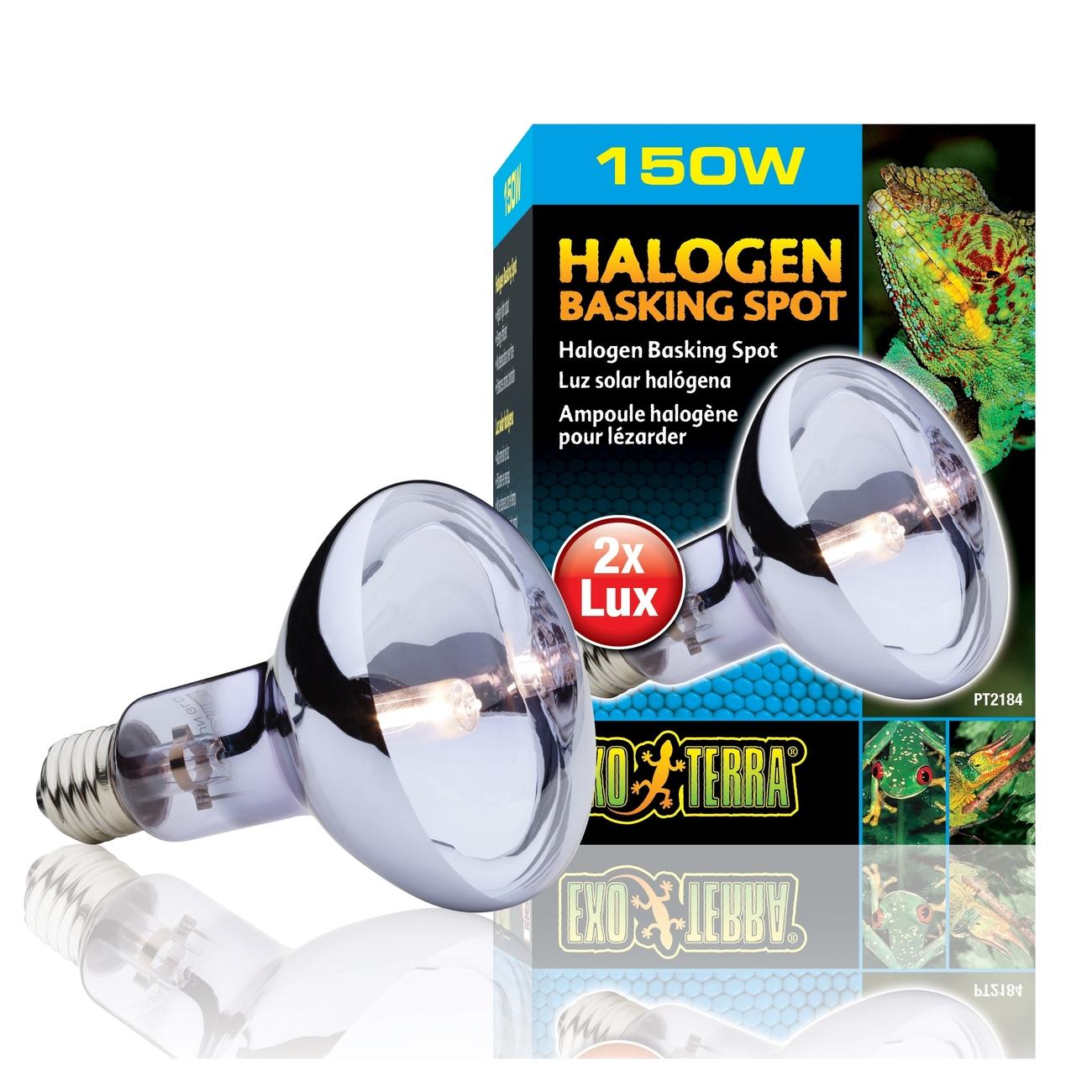 Exo Terra - Halogen Breitspektrum-Tageslichtlampe, Bild 4