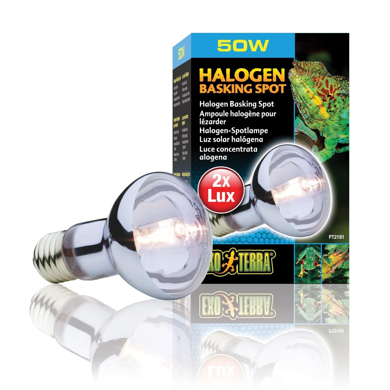 Exo Terra - Halogen Breitspektrum-Tageslichtlampe, Bild 2