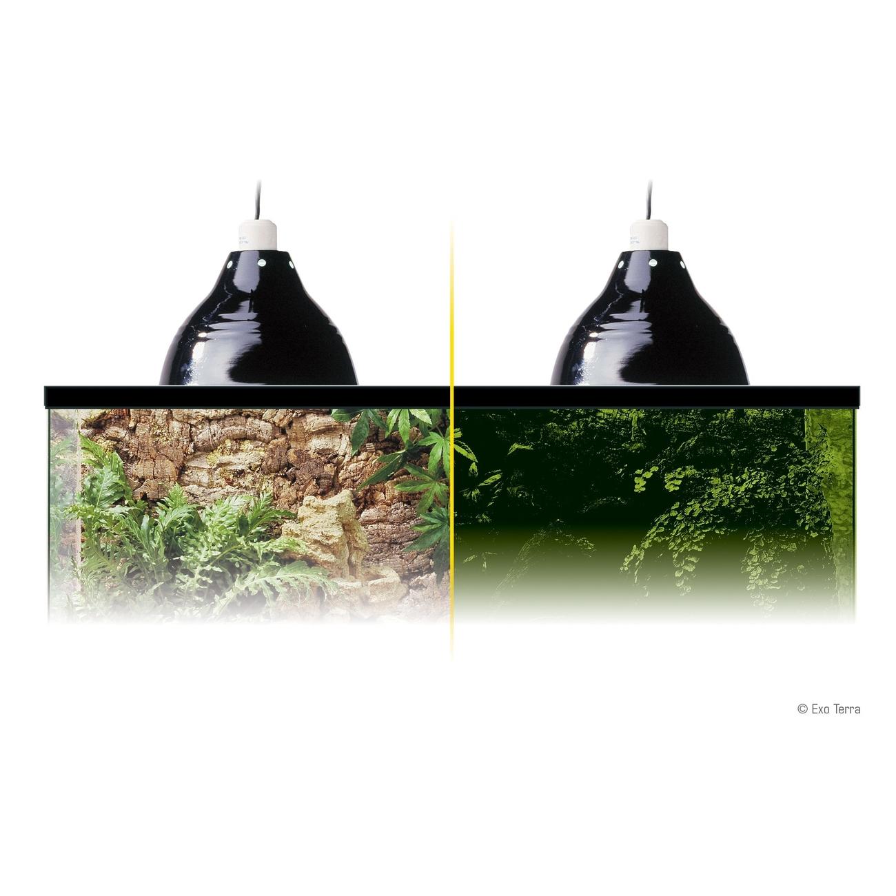 Exo Terra - Porzellan-Klemmlampe mit Leuchtreflektor, Bild 5
