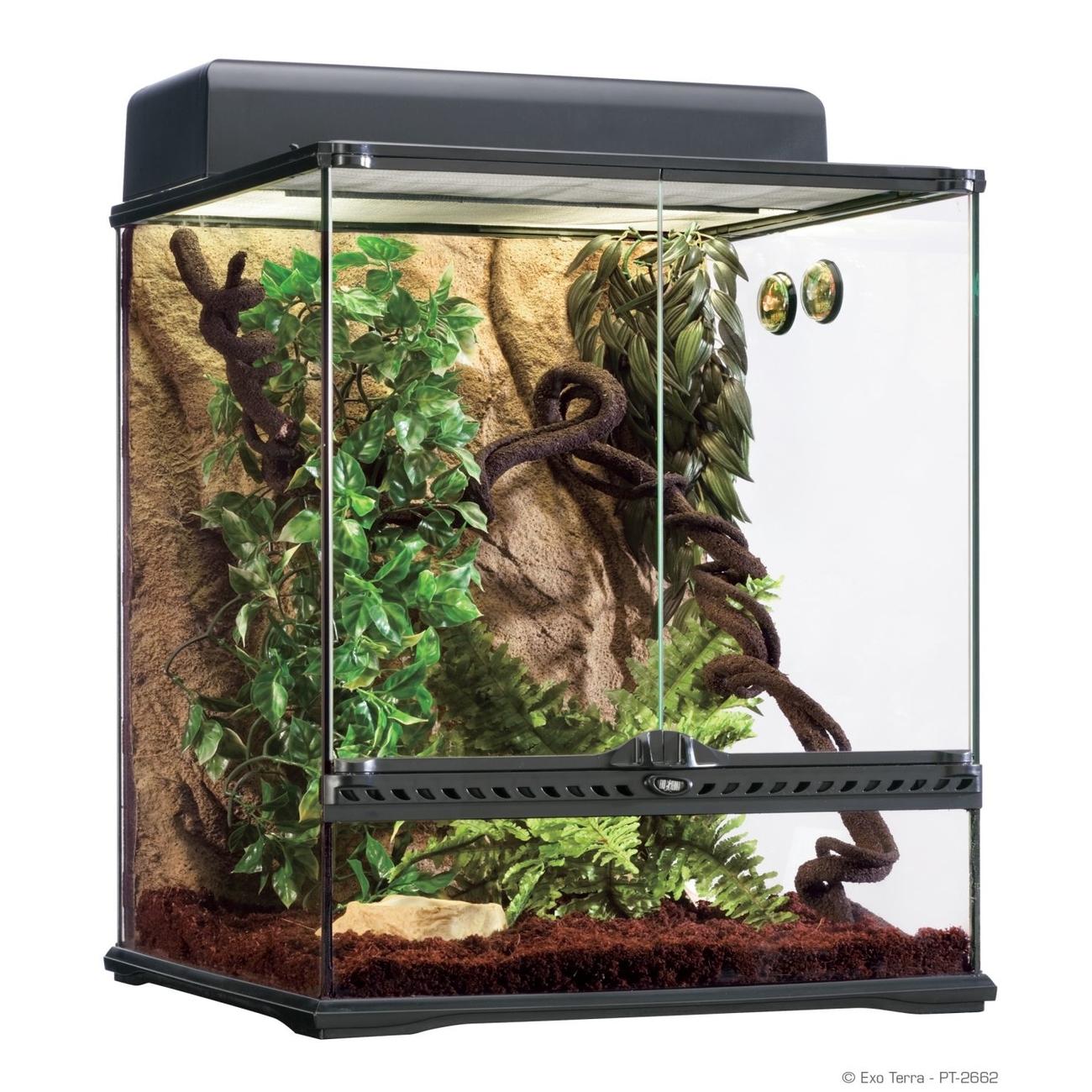 Exo Terra -  Rainforest Habitat Kit Bild 4