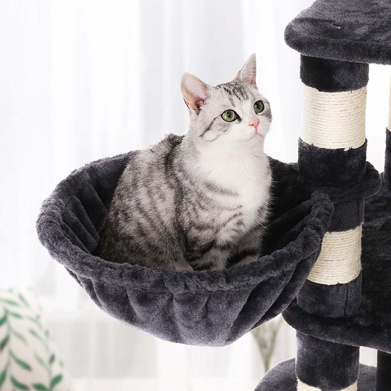 FEANDREA stabiler Kratzbaum mit Katzennapf, Bild 13