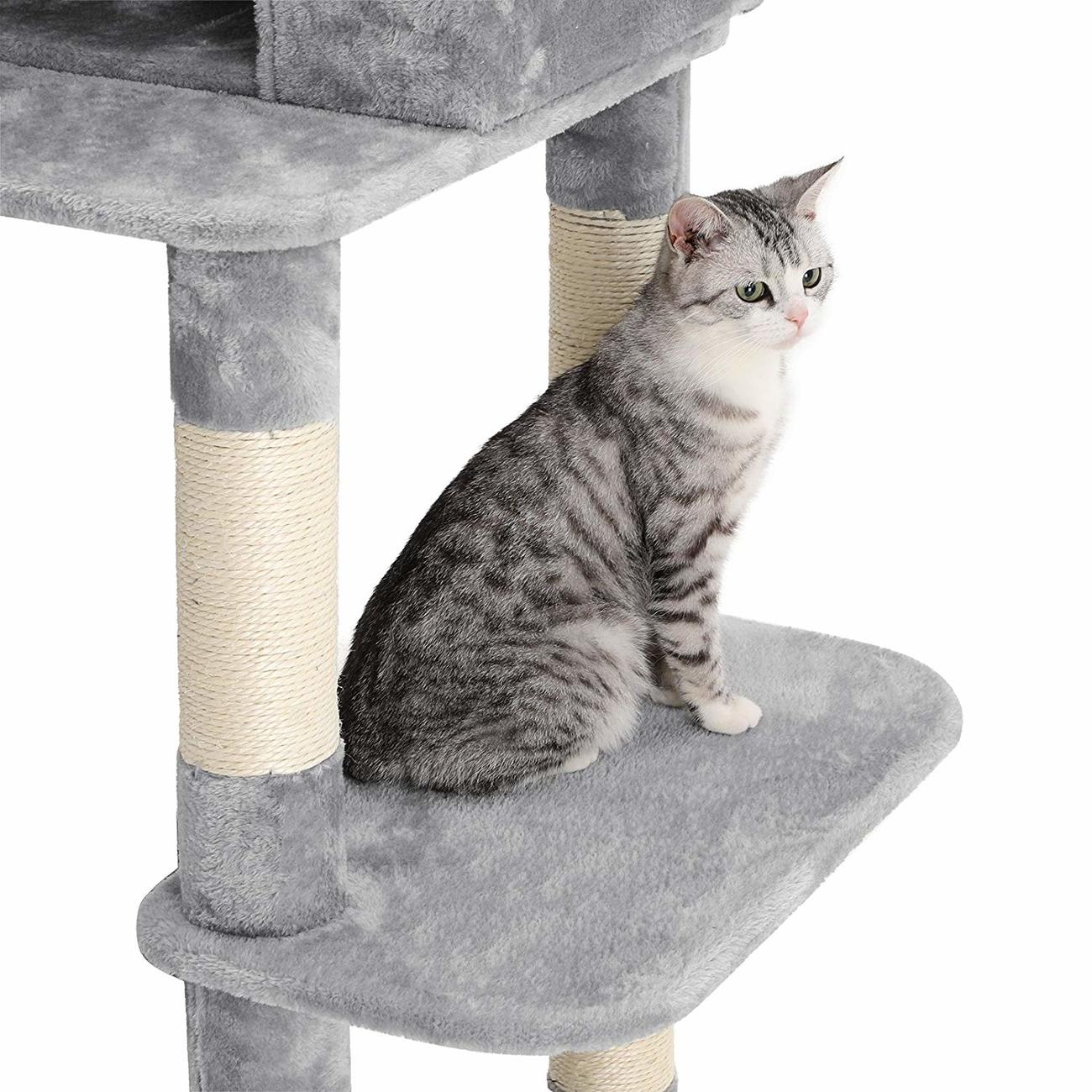 FEANDREA stabiler Kratzbaum mit Katzennapf, Bild 15