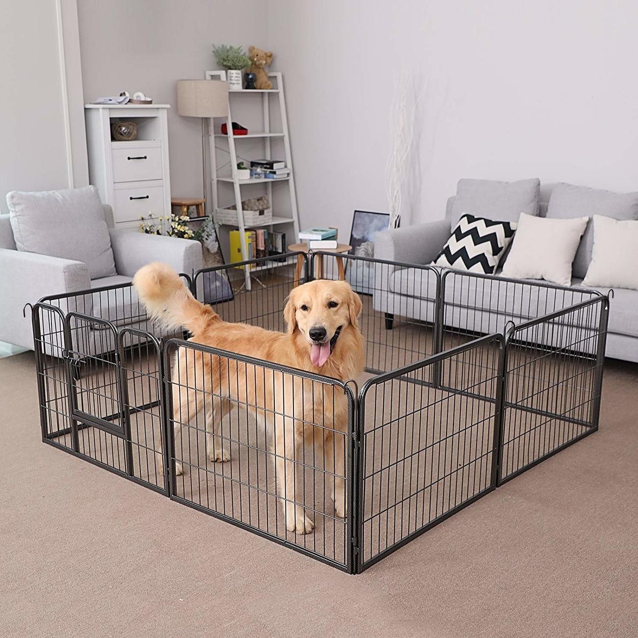 FEANDREA Welpenfreigehege Hundegehege Freilaufgehege 80x60cm, Bild 5