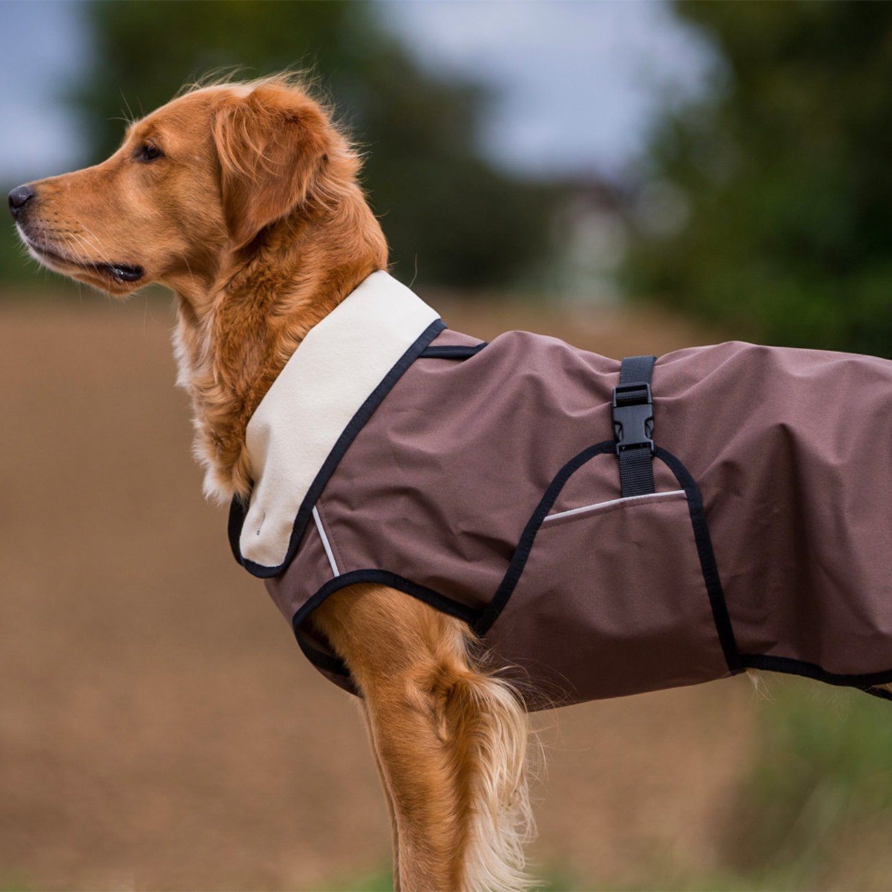 ActionFactory fit4dogs Active Cape LIGHT Hundemantel, Bild 2