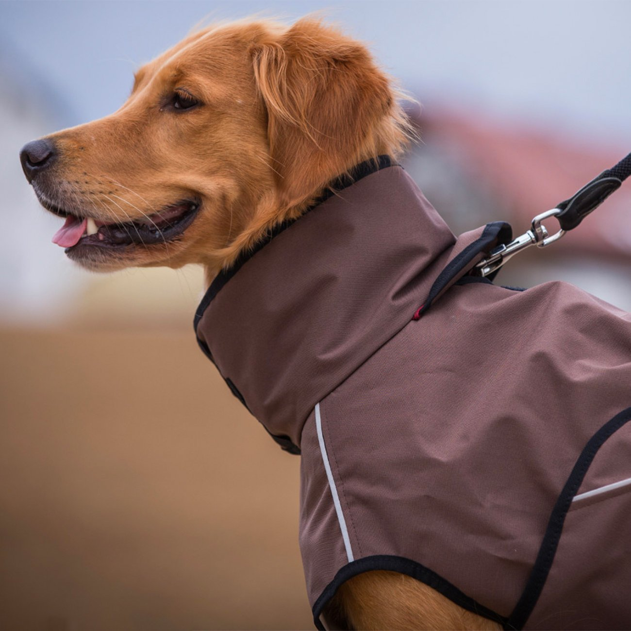 ActionFactory fit4dogs Active Cape LIGHT Hundemantel