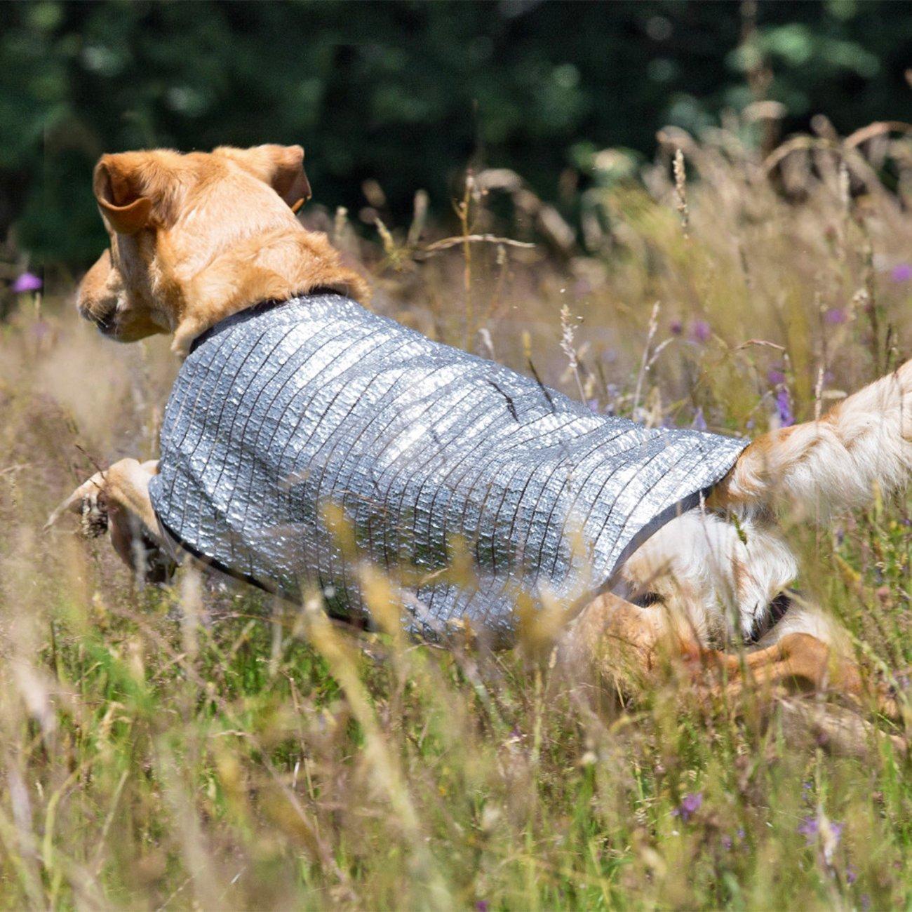 fit4dogs Cooldown Cape für Hunde, Bild 3