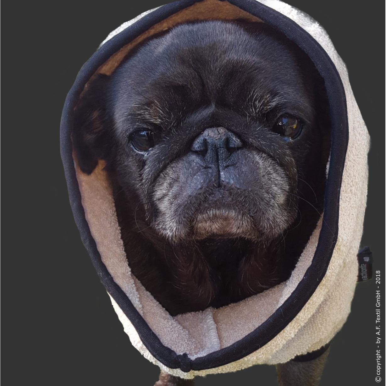 fit4dogs DryUp Cape Trockenmantel für Mops und Co, Bild 2