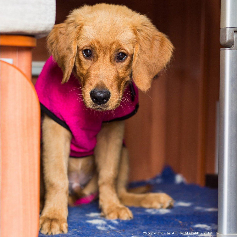 ActionFactory fit4dogs Dryup Mini Trockenmantel für Hunde, Bild 12