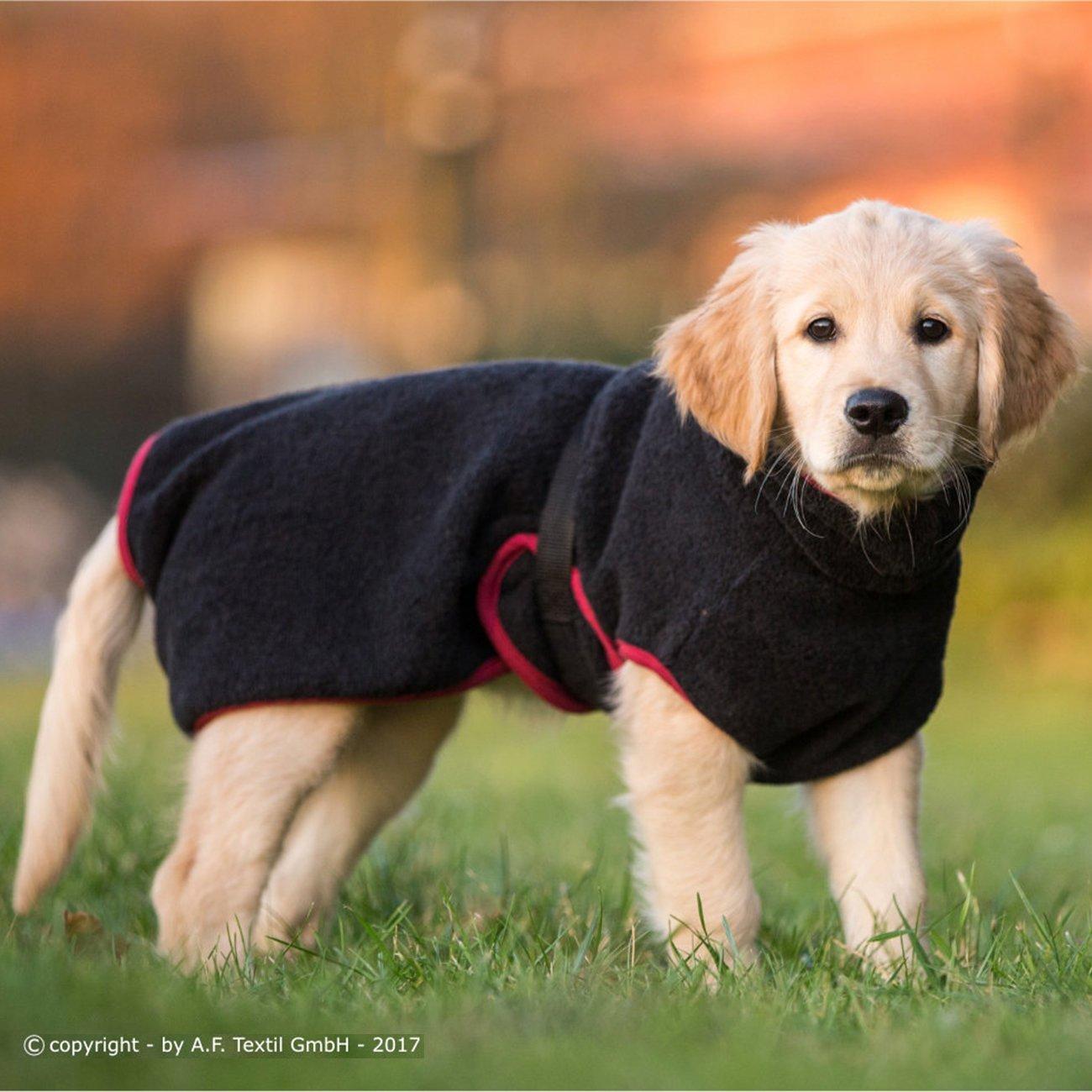 ActionFactory fit4dogs Dryup Mini Trockenmantel für Hunde, Bild 8