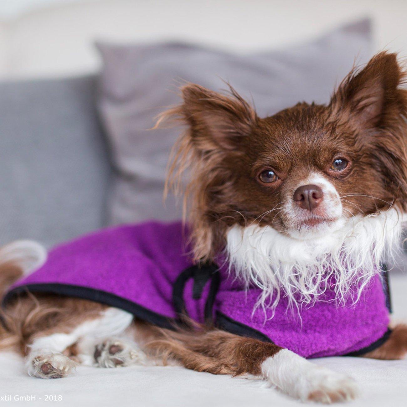 ActionFactory fit4dogs Dryup Mini Trockenmantel für Hunde, Bild 5