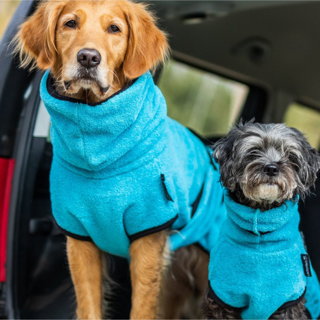 ActionFactory fit4dogs Dryup Mini Trockenmantel für Hunde, Bild 16